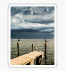 Pelican Pier St Petersburg Sticker