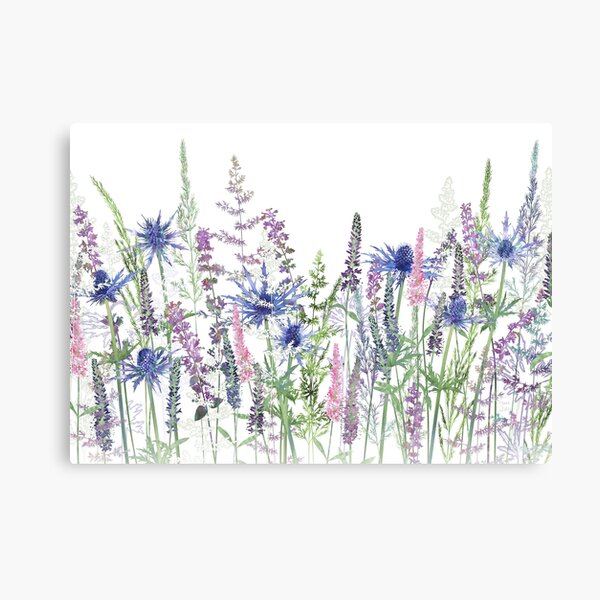 Flower Meadow - Sea Holly, Veronica Flowers, Catmint, Grasses Canvas Print