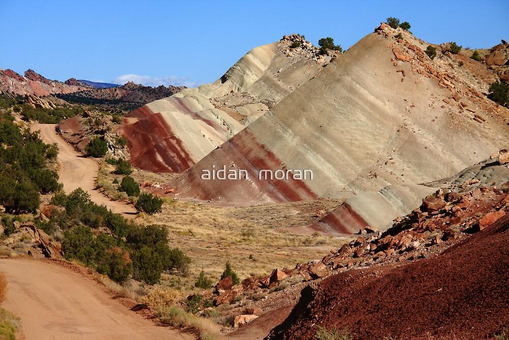"""Red Striped Desert"" Utah Desert Landscape by aidan  moran"