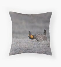 Prairie Chicken 2013-6 Throw Pillow
