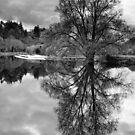 Clashganny weir, River Barrow, County Carlow, Ireland by Andrew Jones