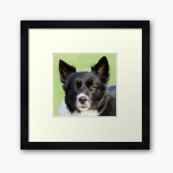 Portrait of Tammy Framed Art Print