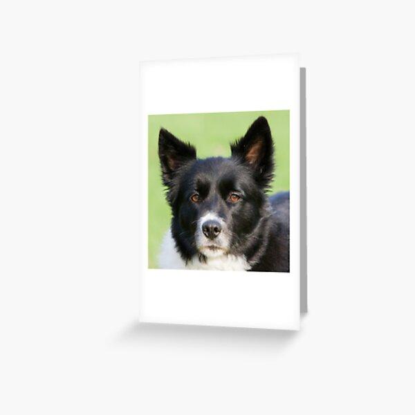Portrait of Tammy Greeting Card