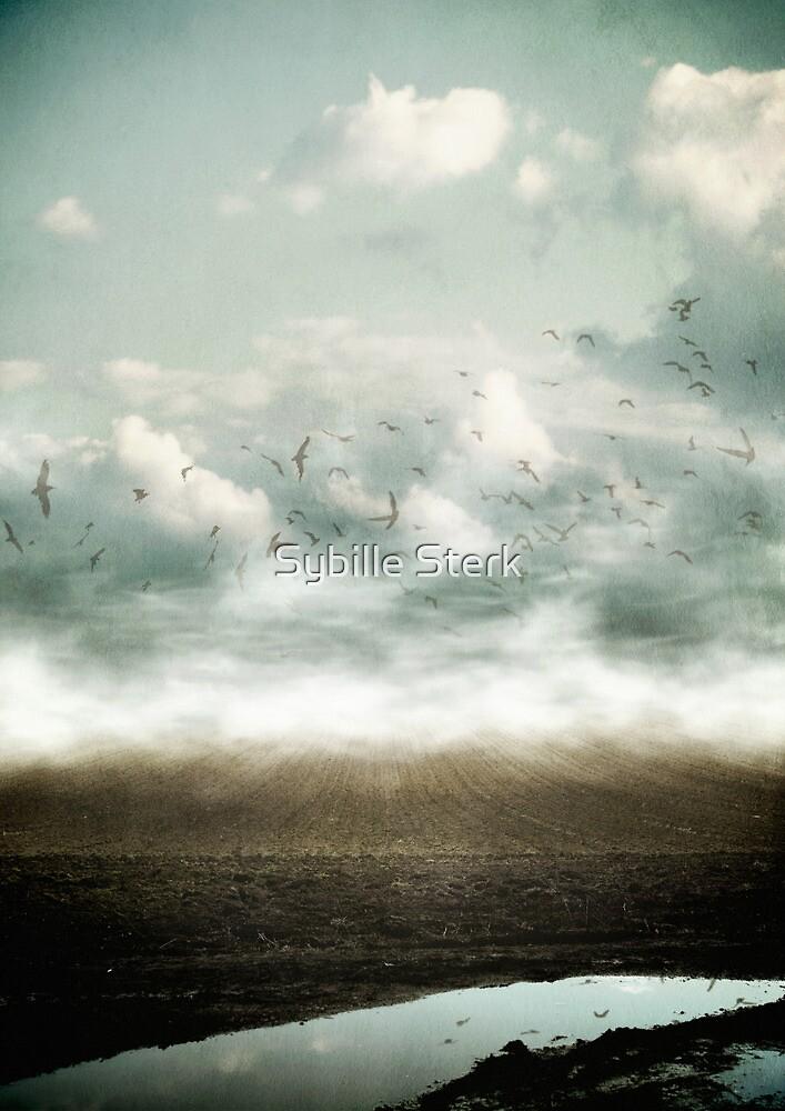 Destiny by Sybille Sterk