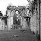 Netley Abbey Window by anfa77