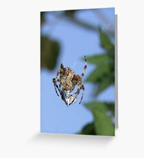 After Eight Greeting Card