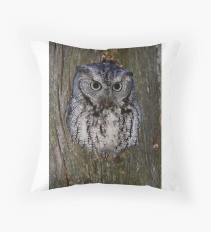 Eastern Screech Owl eye opener Throw Pillow