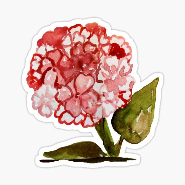 Happy Pink Hydrangea Flowers - Watercolor Sticker