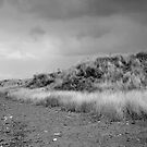A walk along the beach by keithfitton