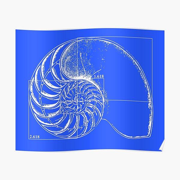 Fibonacci on a nautilus shell (blue) Poster