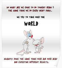 pinky and the brain insanity  Poster