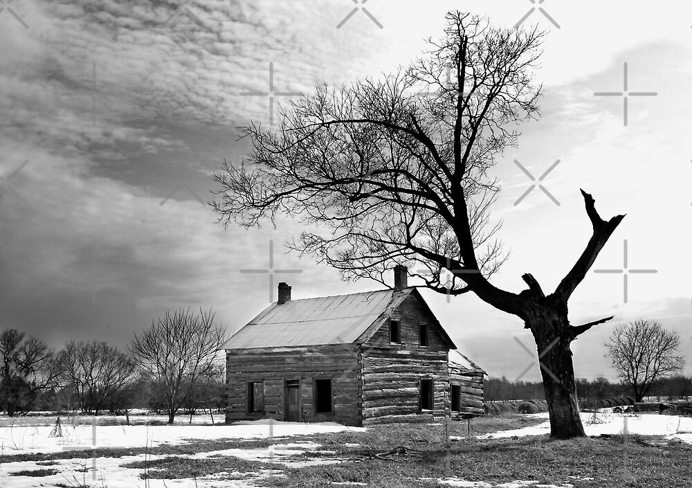 Bleak - Farm house by Jim Cumming