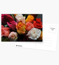 Roses in Assortment Postcards