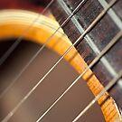 Accoustic Guitar Strings by pjwuebker