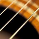 Accoustic Guitar Strings in Motion by pjwuebker