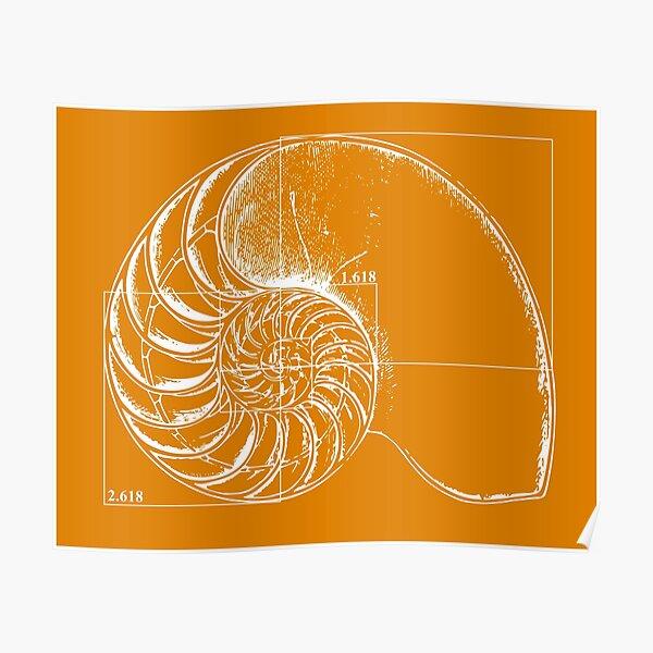 Fibonacci on a nautilus shell (orange) Poster