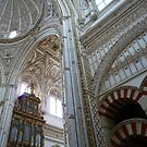 Mezquita's ornate marble archways by Braedene