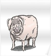 Pig 1 Poster