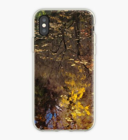 Late Autumn Reflections on Pond iPhone Case