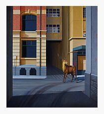 The Messenger II, 2013, Oil on Linen, 101x91cm. Photographic Print