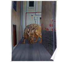 Brown Hare, 2013, Oil on Linen, 61x46cm. Poster