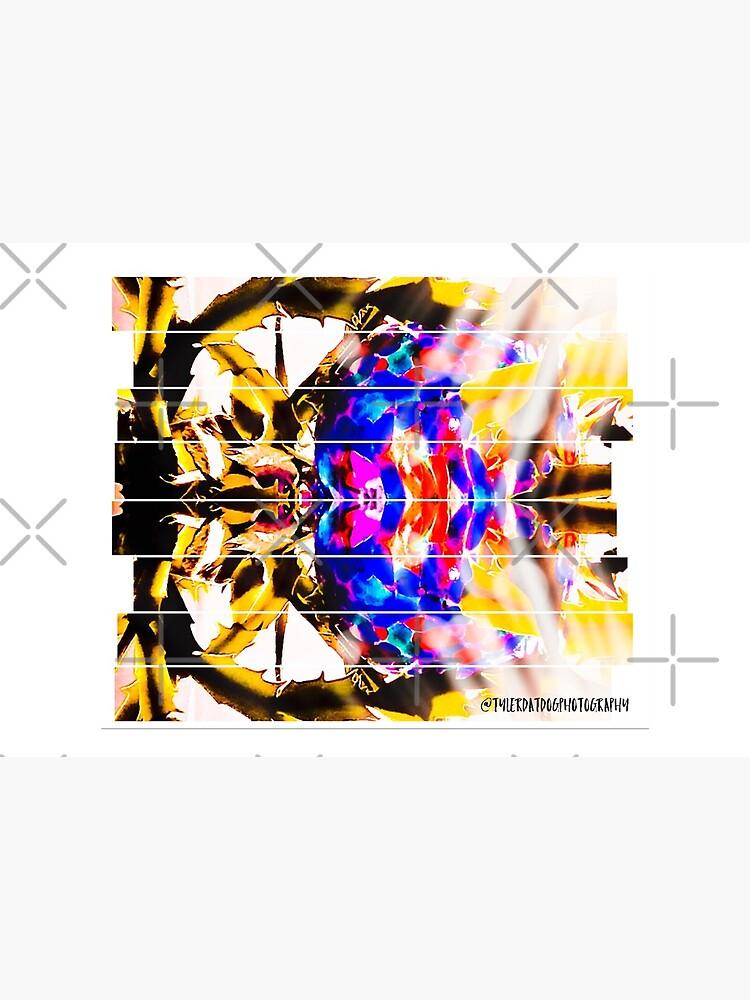 Kaleidoscope  by THamilton81