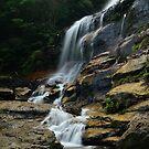 Leura Falls by peter jackson