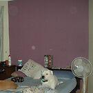 Bedroom orbs. by slater11