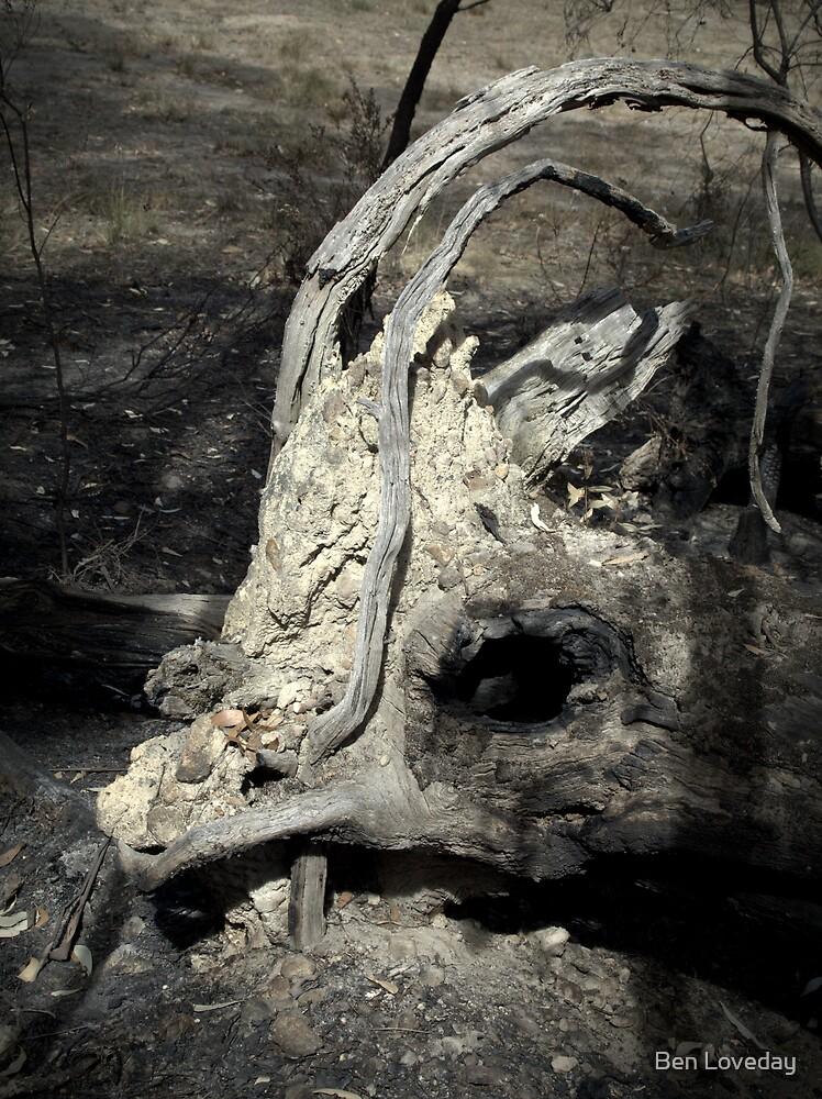 Megafauna Extinction by Ben Loveday