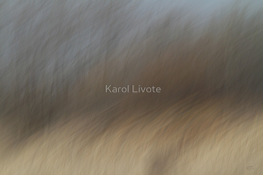 As The Wind Blows by Karol Livote