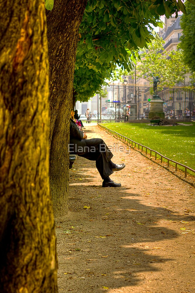 Reflecting in a park in Paris by Elana Bailey