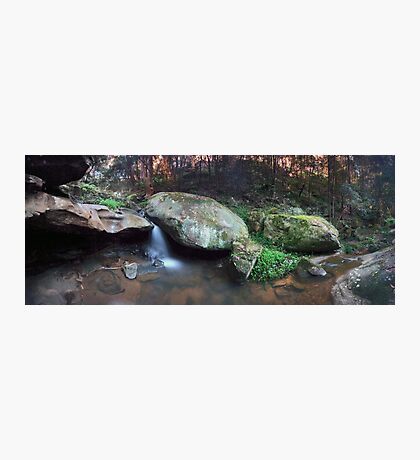 Lennox Falls (look closely to find the old bridge) Photographic Print