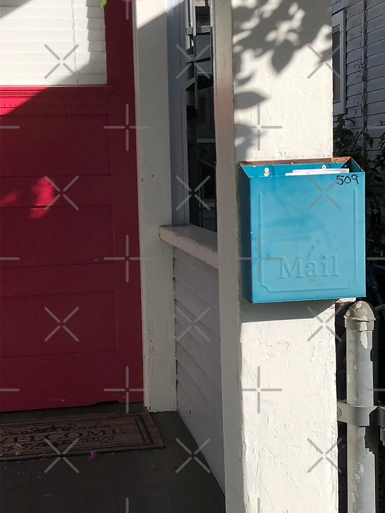 Blue mailbox, Red door, Blue mailbox socks, Bathroom decor by PicsByMi