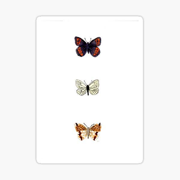 butterflies 3 Sticker