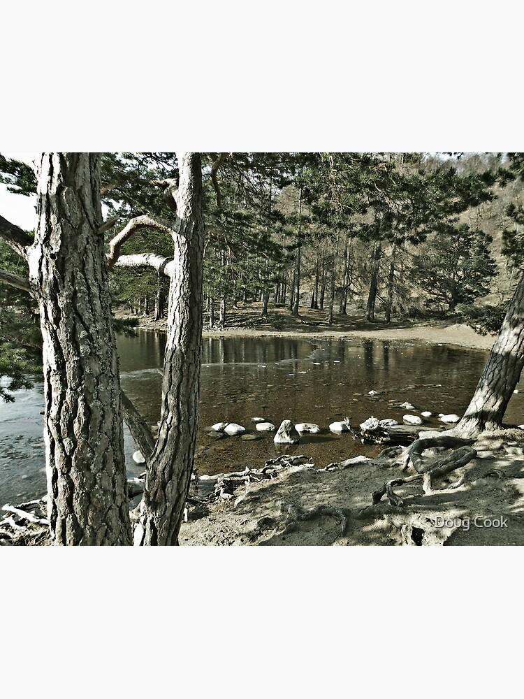 Loch an Eillen Aviemore by DougCook