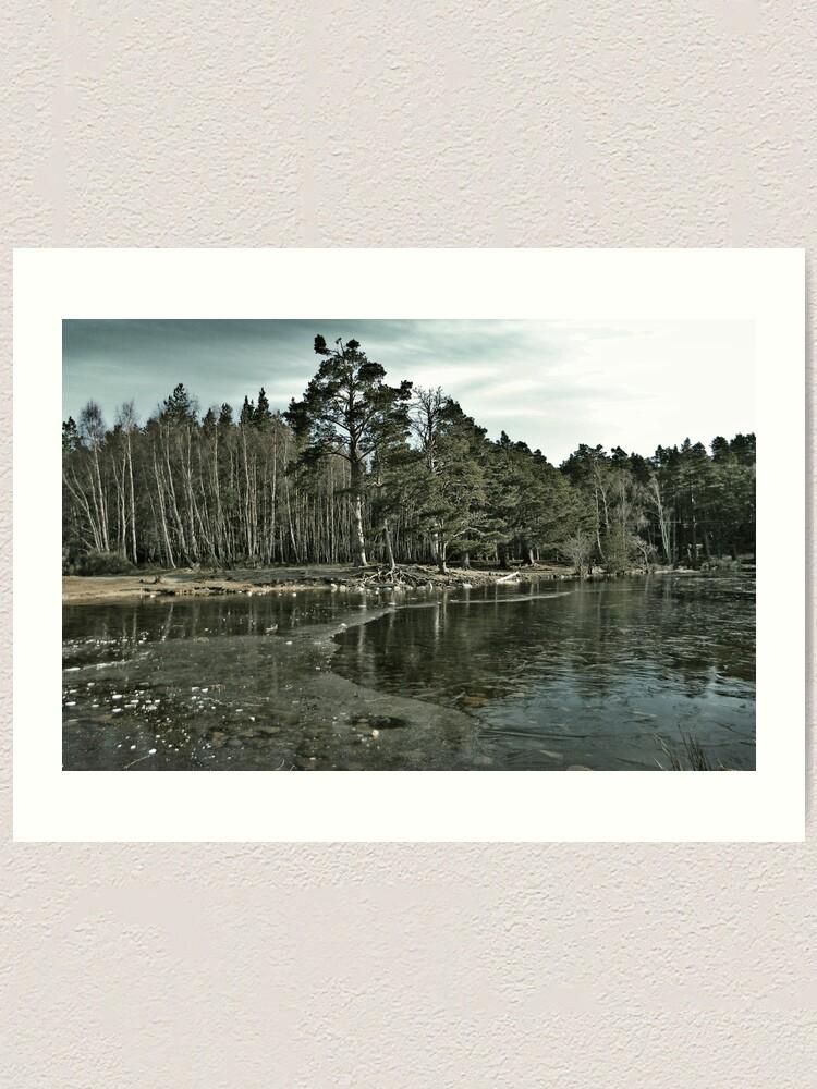 Alternate view of Frozen Loch an Eillen Aviemore Art Print