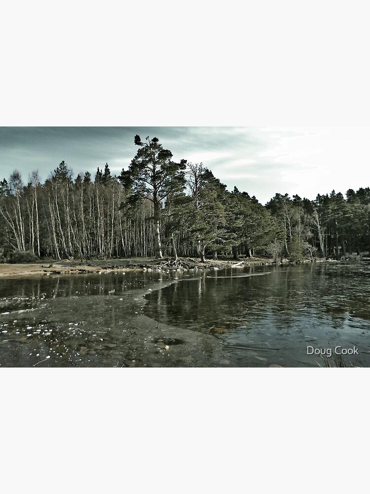 Frozen Loch an Eillen Aviemore by DougCook
