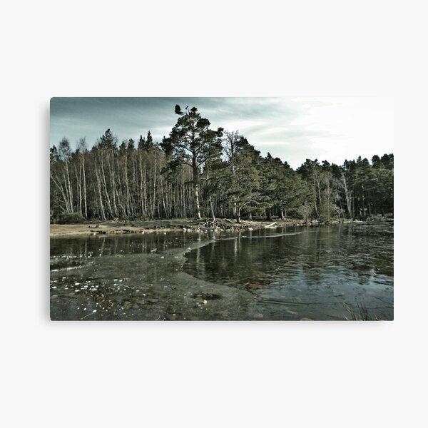 Frozen Loch an Eillen Aviemore Canvas Print