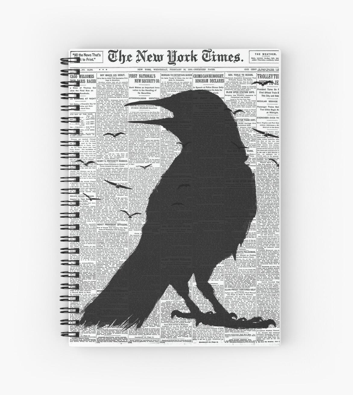 NEW YORK RAVIN 02 by Vin  Zzep