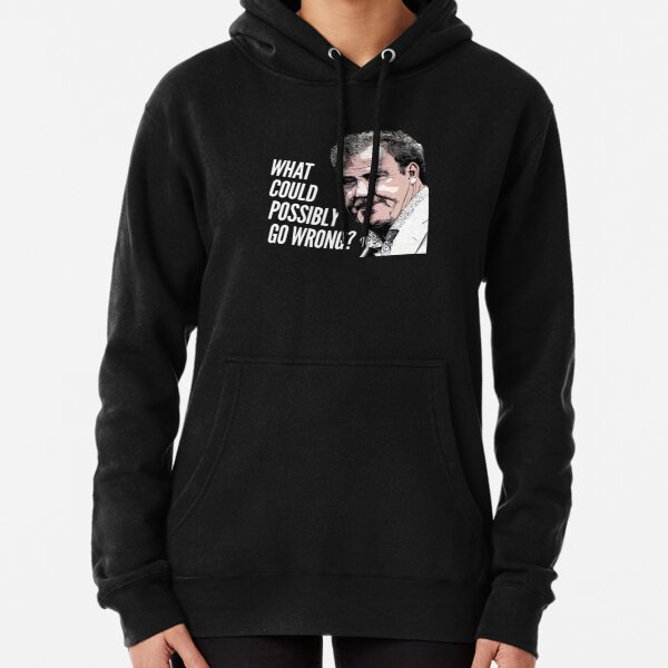 What could possibly go wrong? Pullover Hoodie