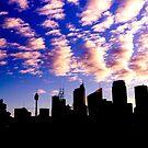 City Silhouette - Sydney 2013 by Llewellyn Cass