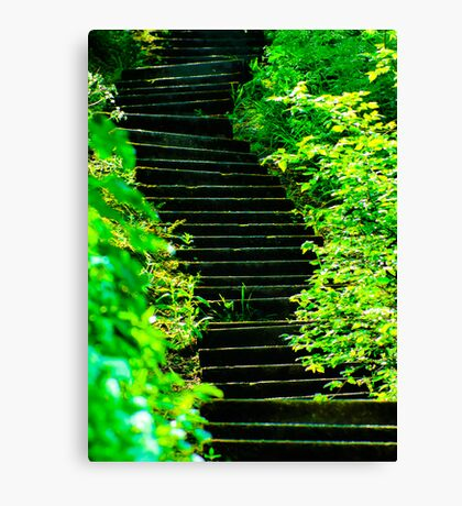 Sunny steps in Scarborough Canvas Print