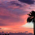 Sunset in Los Gigantes, Tenerife by Thomas Tolkien