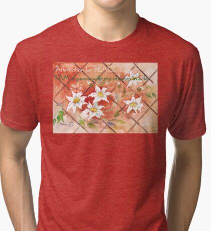 Bestätigung für PEACE 2 Vintage T-Shirt