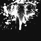 Angry Elephant in White Splash by pjwuebker