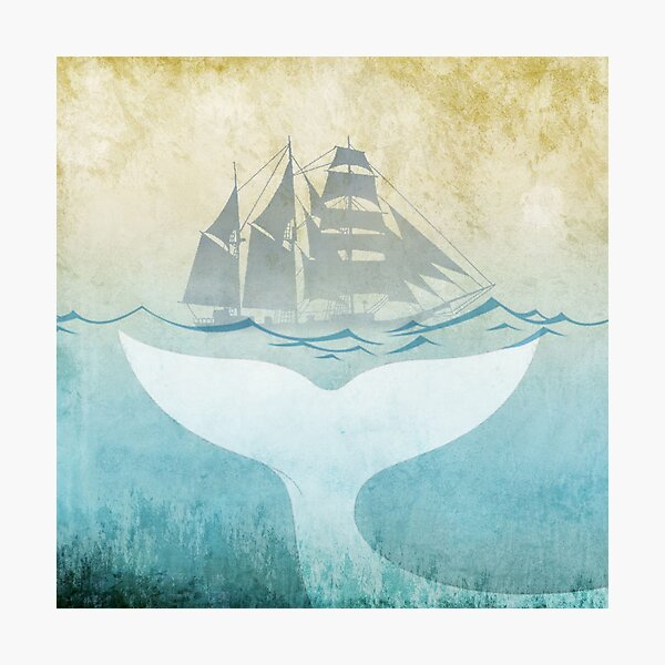 Moby Dick Photographic Print