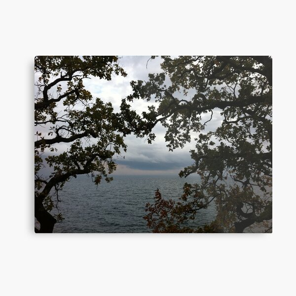 There Metal Print