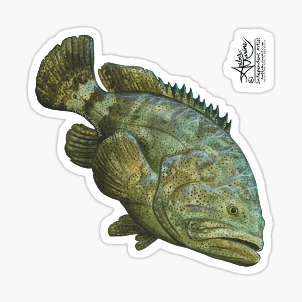 """""""Goliath Grouper"""" by Amber Marine ~ Watercolor painting, art © 2016 Sticker"""