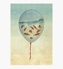 balloon fish 02 Photographic Print