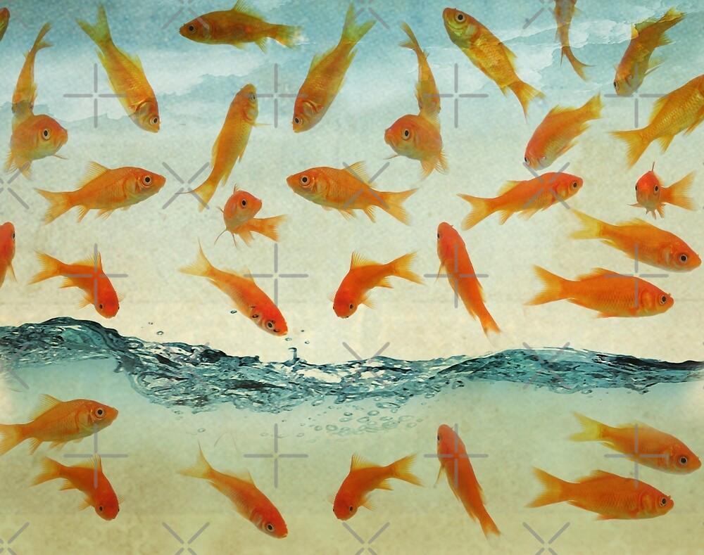 raining goldfish by Vin  Zzep